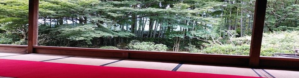 地元京都に根差した